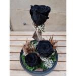 Black forever roses -  - Ανθοπωλειο Χαλανδρι