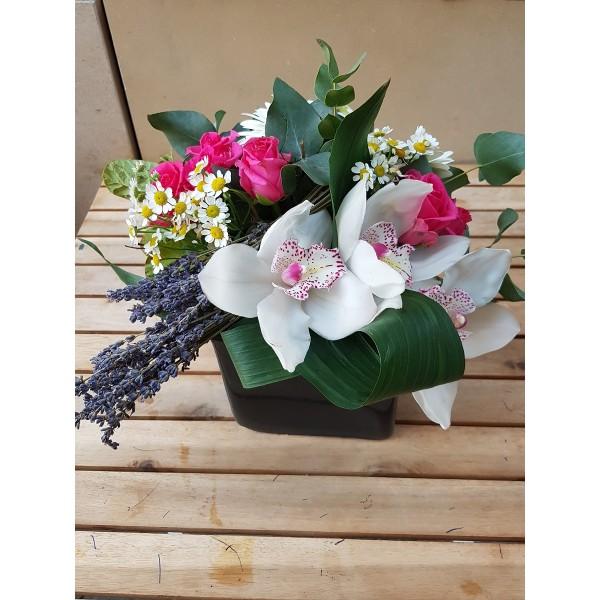 Orchids composition - ΚΑΤΑΣΚΕΥΕΣ - Ανθοπωλειο Χαλανδρι